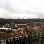 pro-rotuses-balkona-6