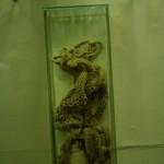 zoologijos-muziejus15