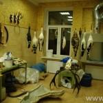 zoologijos-muziejus59