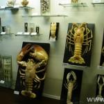 zoologijos-muziejus8