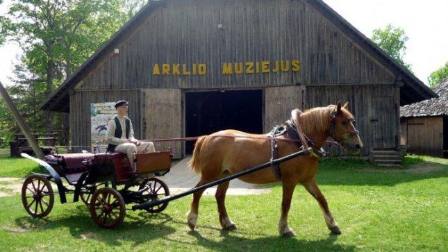arklio_muziejus_2