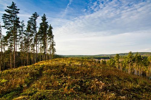 Stirniø piliakalnis | Stirniai mound
