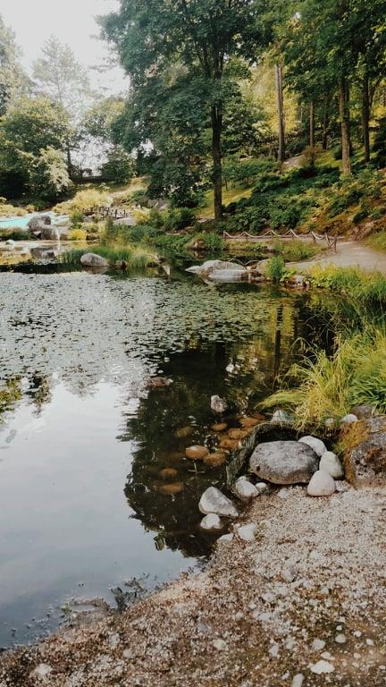 Šis paveikslėlis neturi alt atributo; jo failo pavadinimas yra japoniskas-sodas.jpg